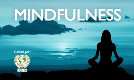 Mindfulness Educators Formation certifiante en ligne en mindfulness sur Mindfulness Educators