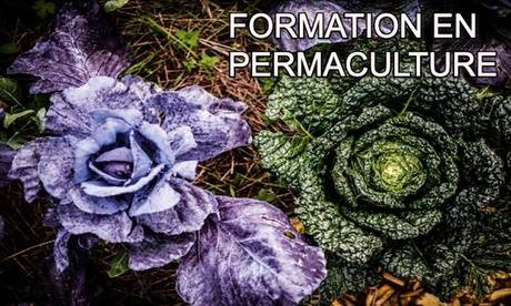 Meformer Formation en permaculture avec Meformer