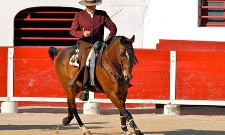 """Doma Vaquera France - Chevalissimo Tour 1, 3 ou 5 cours privés avec cheval d'école et professeur """"champion de France"""" à l'école Doma Vaquera France"""