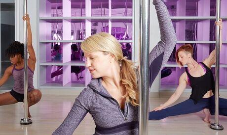 Family Fitness 1 séance de pole dance d'1h au centre Family Fitness