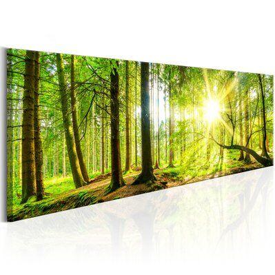 Artgeist 120x40 - Tableau - Majestic Trees
