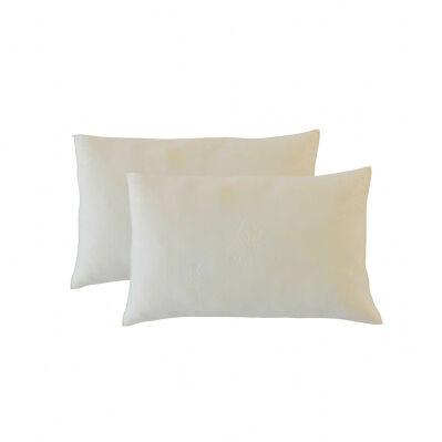 Bellecour Pack de 2 oreillers ALOE VERA à mémoire de forme - blanc