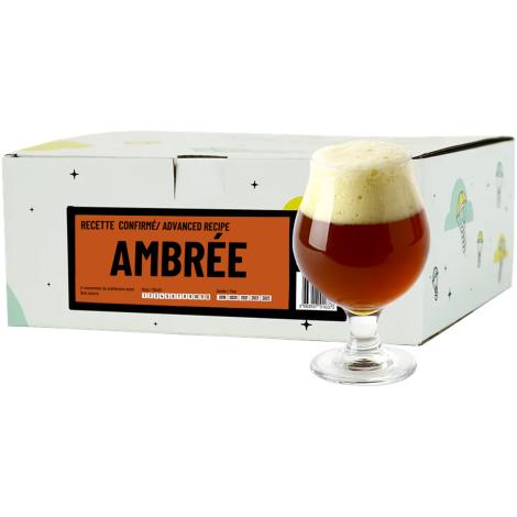 InterDrinks Recette Bière Ambrée - Recharge Pour Beer Kit Confirmé   Interdrinks   Saveur Bière