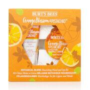 Burt's Bees Coffret mains et lèvres produits nourrissants à base de plantes - Fleur d'oranger & Pistache