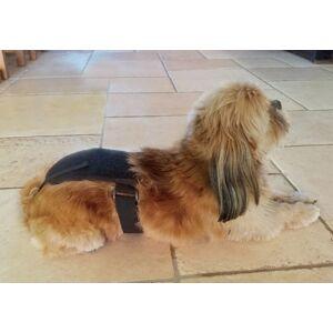 Auris Ceinture magnétique pour chien Doggy Mag de petite taille - Publicité