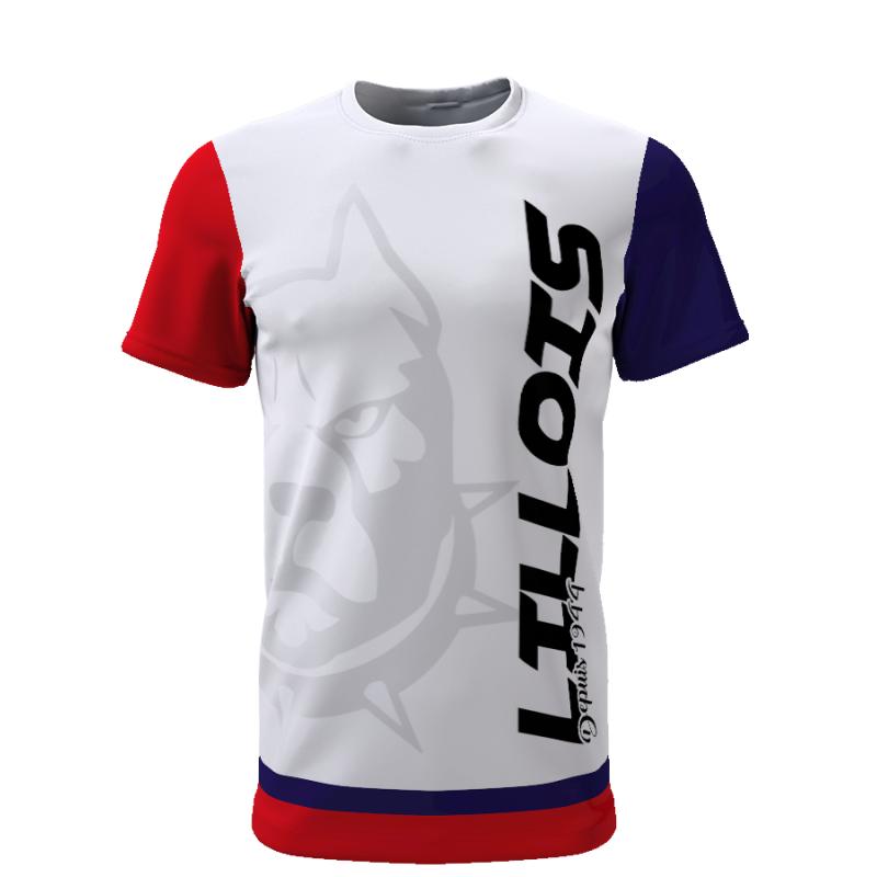 Tribune FC Lillois depuis 1944 - Supporters Lille - Tribune FC