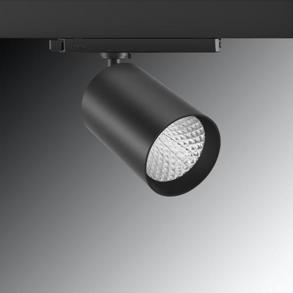 CANDUS® CAMU Spot LED pour rail haute tension triphasé, 141278L00037