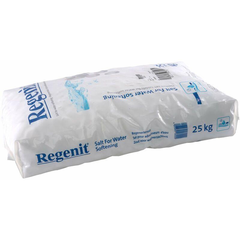 ESCO 4 x 25 kg Comprimés de sel évaporé Regenit pour la régénération des adoucisseurs d'eau