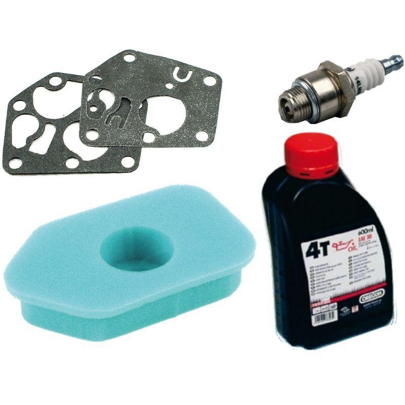 Gardexx - Membrane de carburateur + filtre à air + bougie d'allumage + huile moteur pour BriggsundStratton Sprint