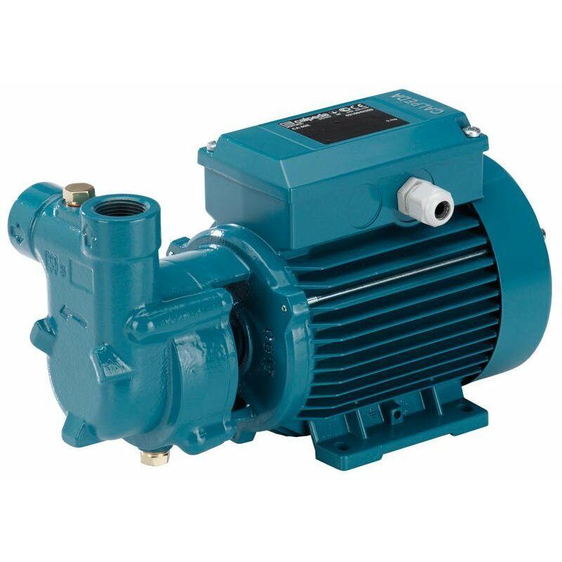CALPEDA Pompe Autoamorçante de surface avec anneau à eau pour présence d?air ou de gaz dans l'eau à pomper CA90/A 0,55kW 400V Calpeda