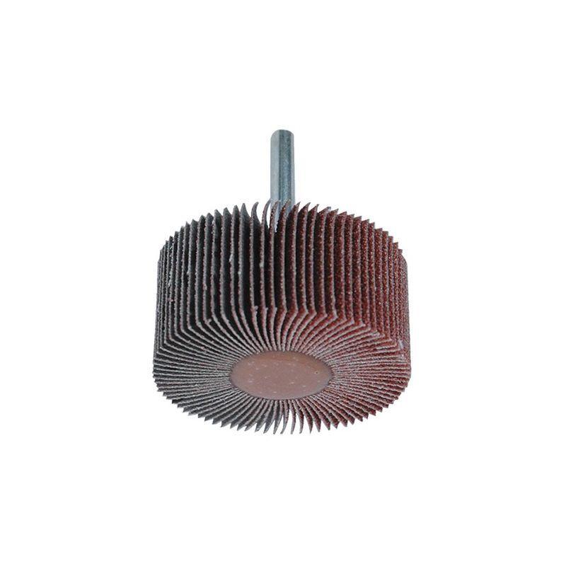LEMAN Lot de 10 roues à lamelles corindon pour bois et métal - D. 80 x L. 30 mm Gr. 60 - 9983060 - Leman