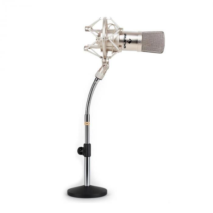 Auna Set micro studio avec micro XLR argent et pied de table