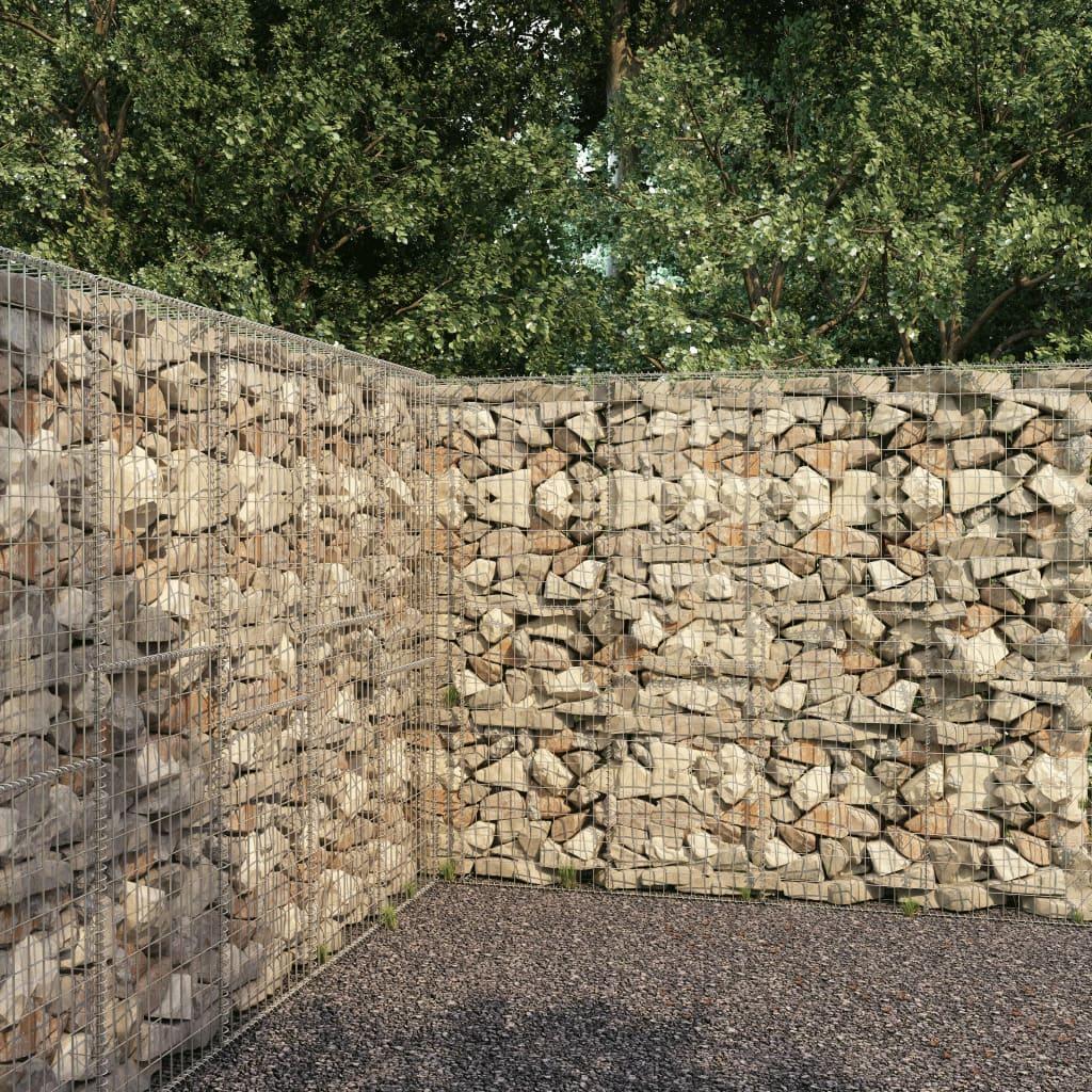 vidaXL Mur en gabion avec couvercle Acier galvanisé 300 x 50 x 200 cm