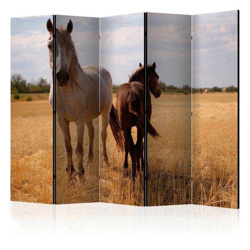 Artgeist - Paravent 5 volets - Horse and foal II [Room Dividers] 225x172