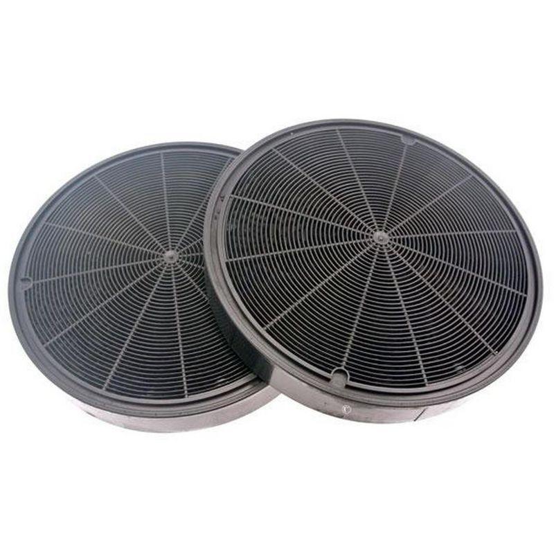 ROBLIN Lot de 2 filtres charbon type 196 (484000008674) Hotte 295552 ROBLIN, ARISTON