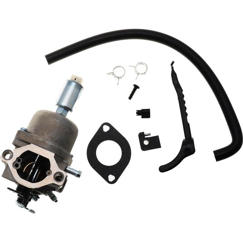 JARDIAFFAIRES Carburateur adaptable pour moteur Briggs Stratton remplace 799727