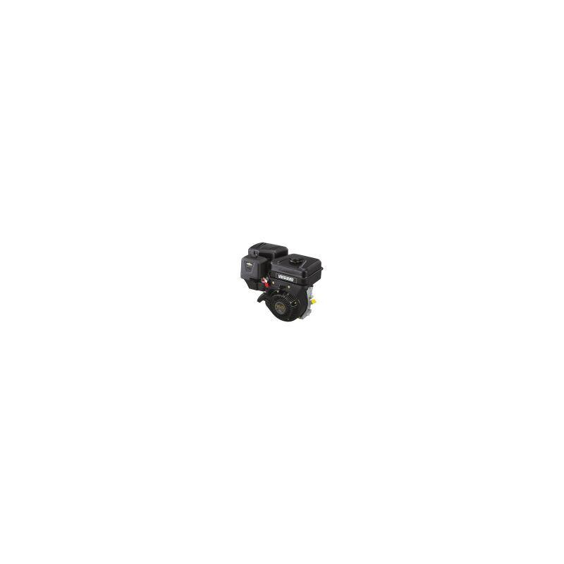 BRIGGS & STRATTON Moteur tondeuse BRIGGS & STRATTON 9 HP 305cm3 BS19L232-0314-F1