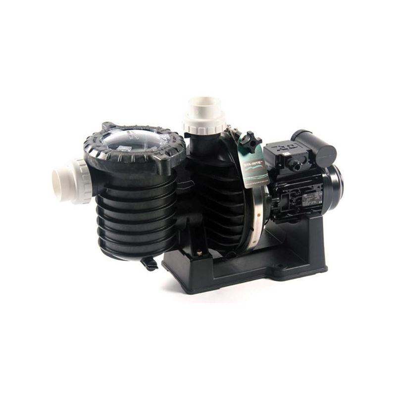 STA RITE pompe à filtration 1.5 cv 22m3/h triphasé eau de mer - sw5p6rf-3 - Sta Rite