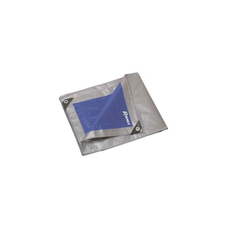 Ribimex - Bâche de protection Pro 6X10 250 g/m2