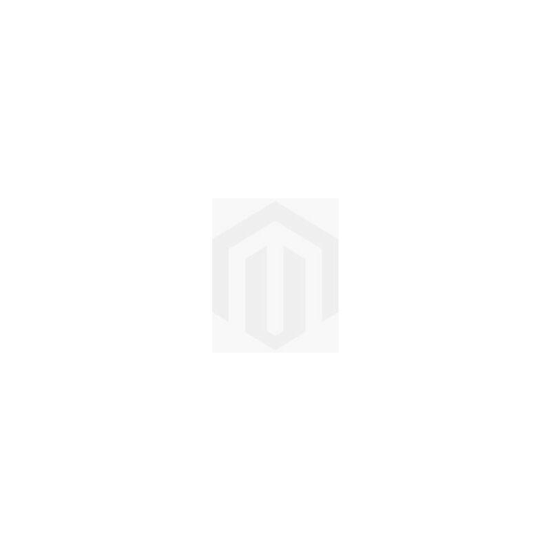 BADPLAATS Toilette Meuble Salle de Bain Mesa 40x22 cm Gris - Lavabo Armoire Toilette