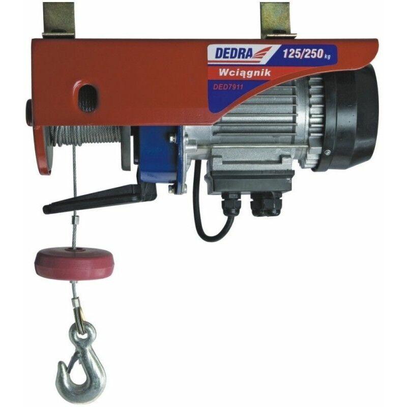 Hucoco - DTOOLS   Treuil Palan électrique garage/atelier   Charge max 125 kg