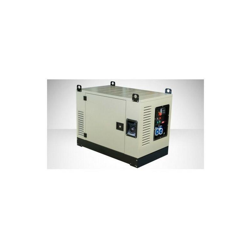 FOGO Groupe électrogène essence 16.5kw AVR silencieux moteur Vanguard FV17001CRA