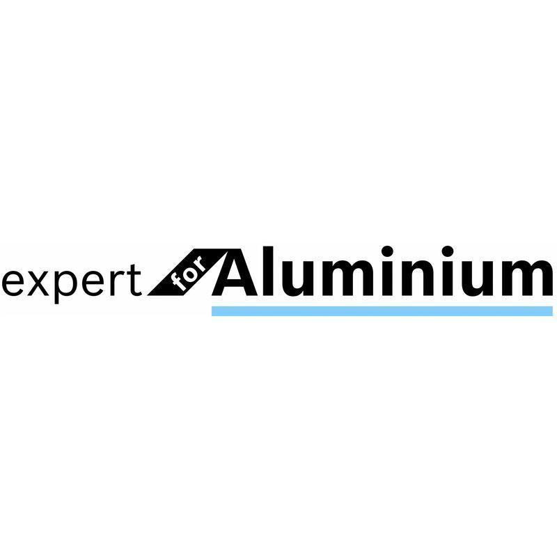 BOSCH Lame de scie circulaire Bosch 2608644115 Expert - 305 x 30 x 96T - Aluminium