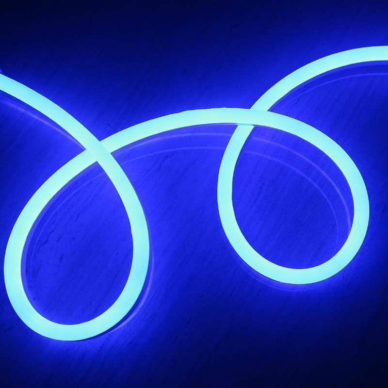 LECLUBLED Néon LED Flexible lumineux   Bleu - 50m