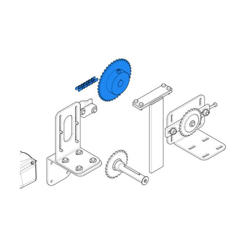 CAME pièce détachée pignon et chaîne c-bx 119ricx016 - Came