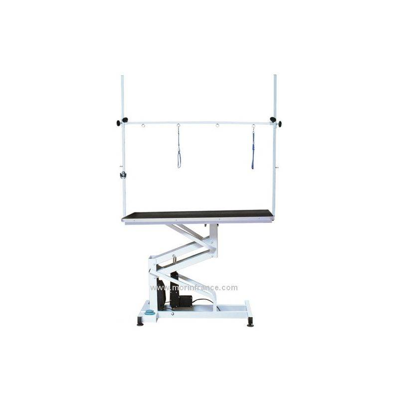 MORIN Table de toilettage électrique Désignation : Table électrique 2107 - Morin