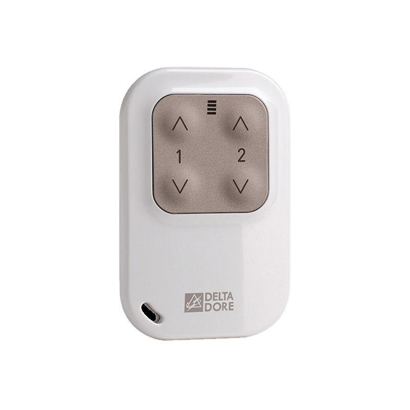 Delta Dore - TYXIA 1400 Télécommande porte-clé pour éclairages et automatismes