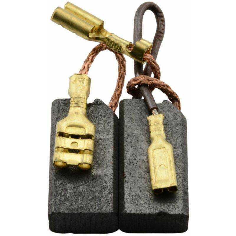 HILTI Balais de Charbon pour Hilti TE50 - 6,3x10x19mm - Remplace 202240, 71781 & 71874