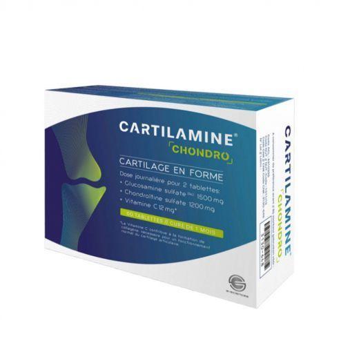 e-sciences Cartilamine