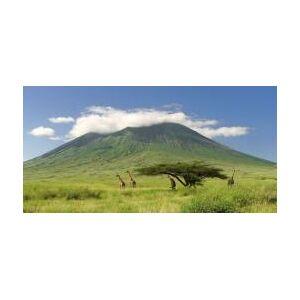 Tanzanie: Kilimanjaro - Publicité