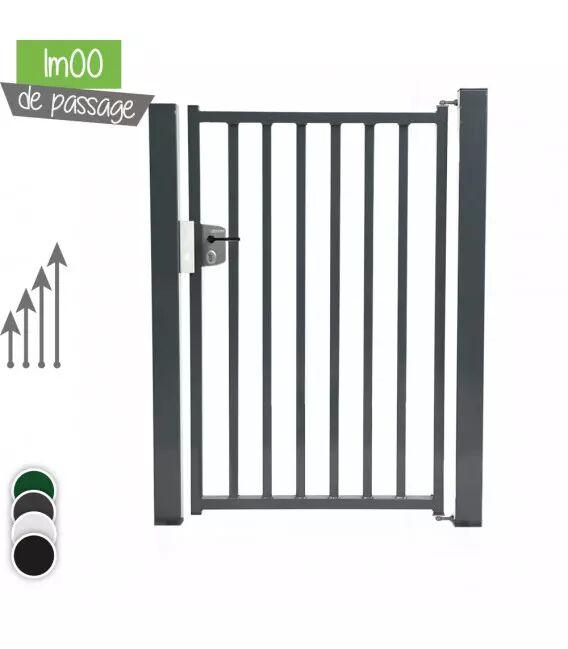Portillon BarrO 20/20 Passage 1m00 - Couleur - Vert 6005, Hauteur - Ht 1m80, Pose - sur platine soudée