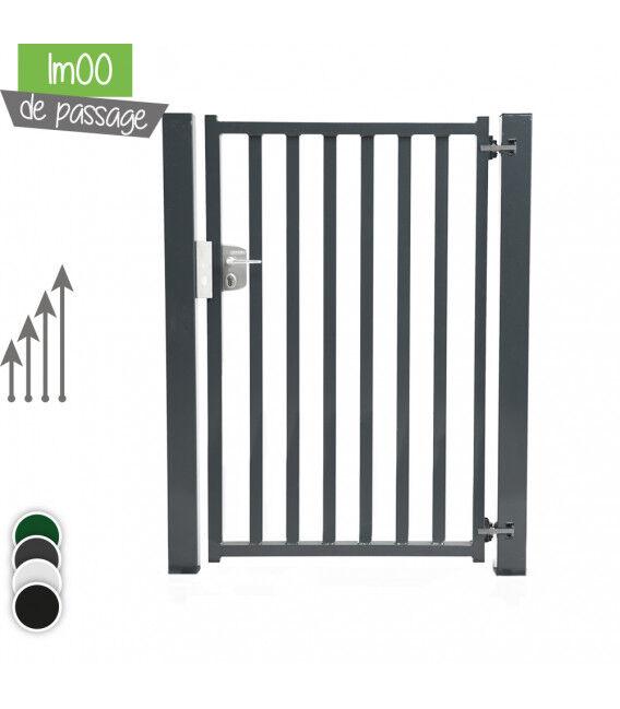 Portillon BarrO+ 35/35 Passage 1m00 - Couleur - Vert 6005, Hauteur - Ht 2m00, Pose - sur platine soudée