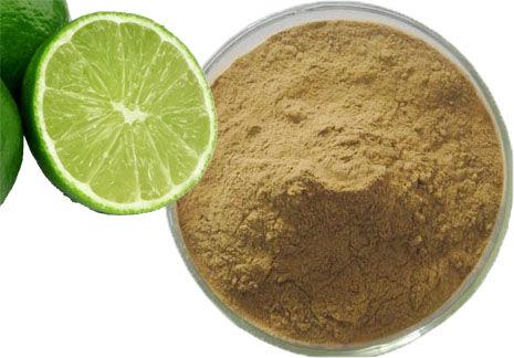Santé Bio Citron vert entier Bio (extrait en poudre) - 250 g