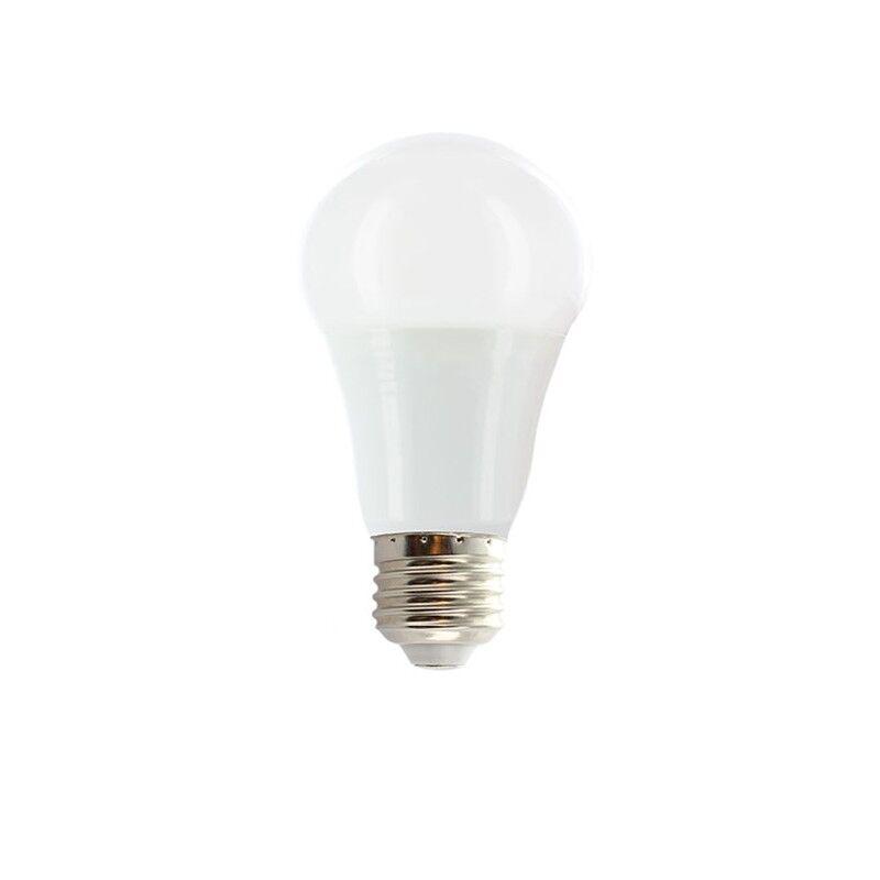 Vision-EL Ampoule LED 10W (90W) E27 Bulb opale Blanc chaud 2700°K