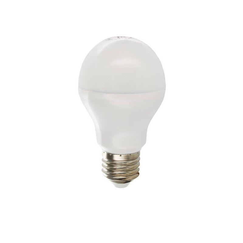 Vision-EL Ampoule Led 10W (90W) E27 Blanc chaud 3000°K Bulb opale