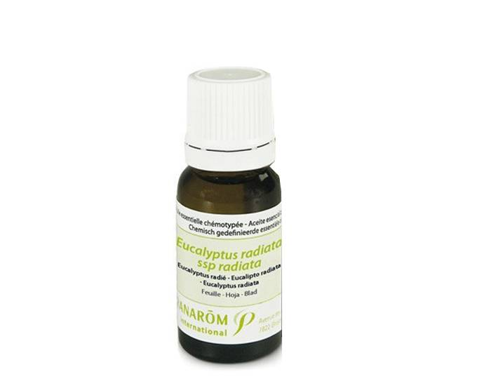 PRANAROM Eucalyptus Radié 10 ml