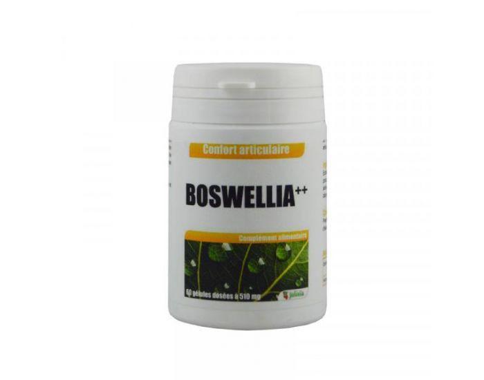 JOLIVIA Boswellia ++ extrait en gélules 60 gélules