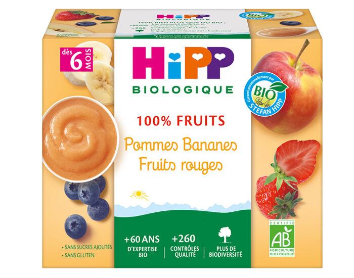 HIPP 100% Fruits - 4 x 100 g Pommes Bananes Fruits rouges - 6M