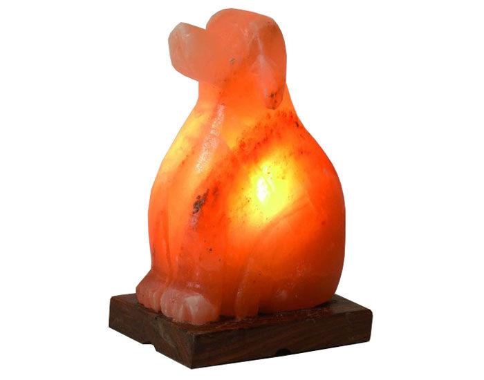 BIO ELEMENTS Lampe de Sel d'Himalaya Naturelle - Chien - 2-3kg