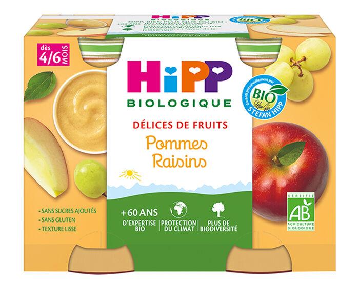 HIPP Délices de Fruits - 2 x 190g Pommes - Raisins AA - 4 M