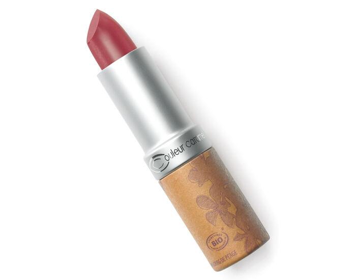 COULEUR CARAMEL Rouge à Lèvres Glossy no 234 - Bois de Rose