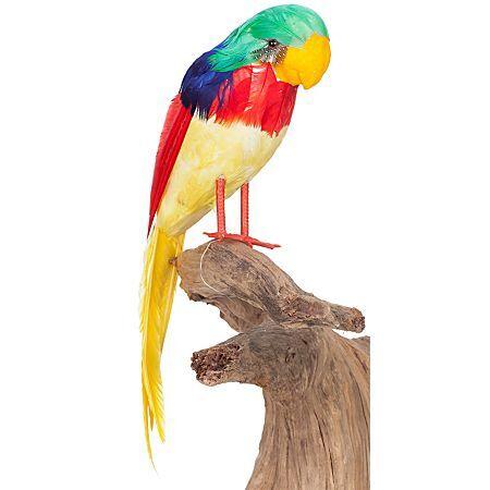 Perroquet déco, multicolore, 40 cm