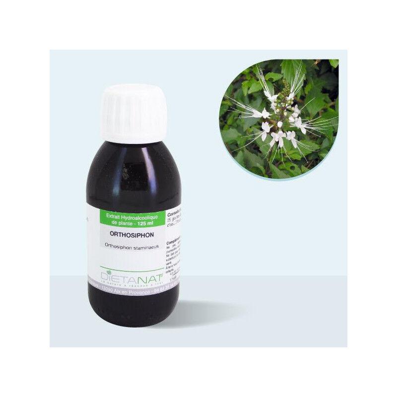 Dietanat Orthosiphon staminaeus - 125ml Teinture mère