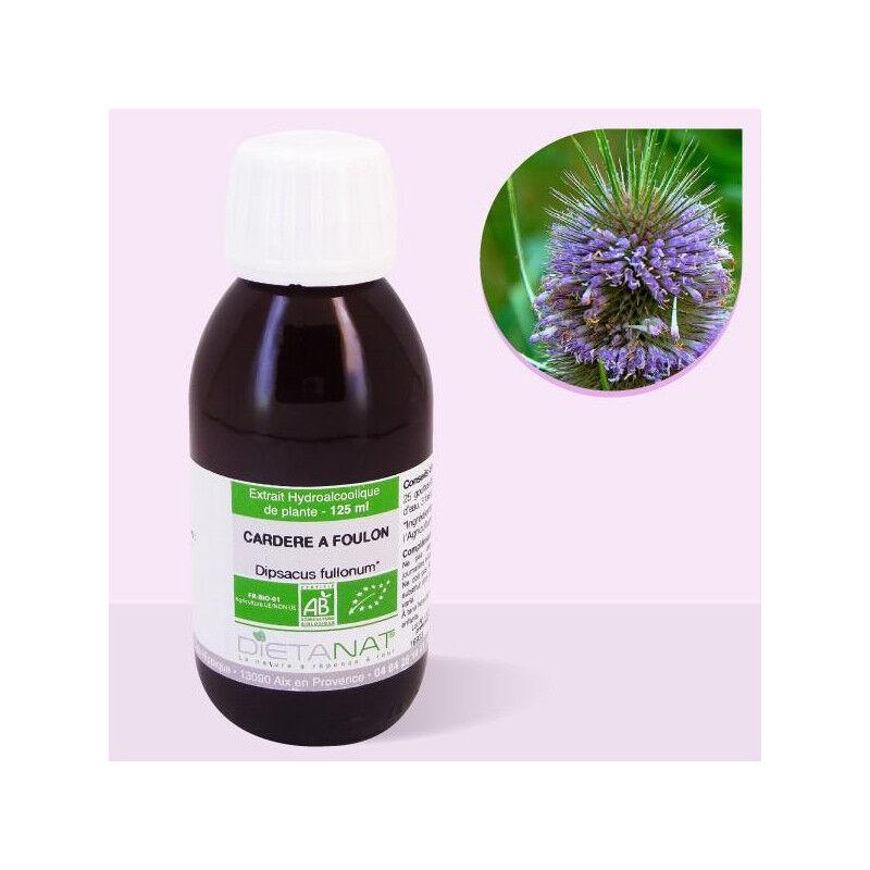 Dietanat Cardère sauvage bio - 125ml Teinture mère bio