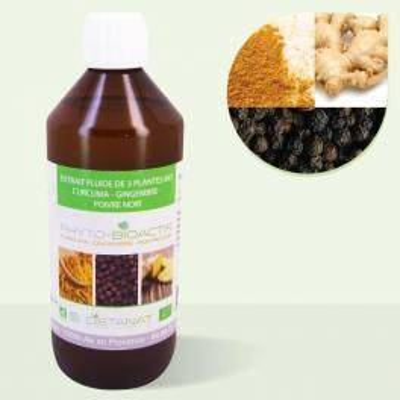 Dietanat Curcuma Gingembre Poivre Noir bio 9-5-1 - 500ml Extrait de plantes fraiches