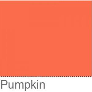 Colorama Fond de Studio 2.72 X 11m Pumpkin - Publicité